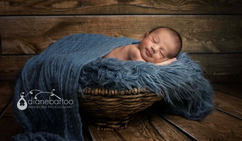 newborn boy in basket picture