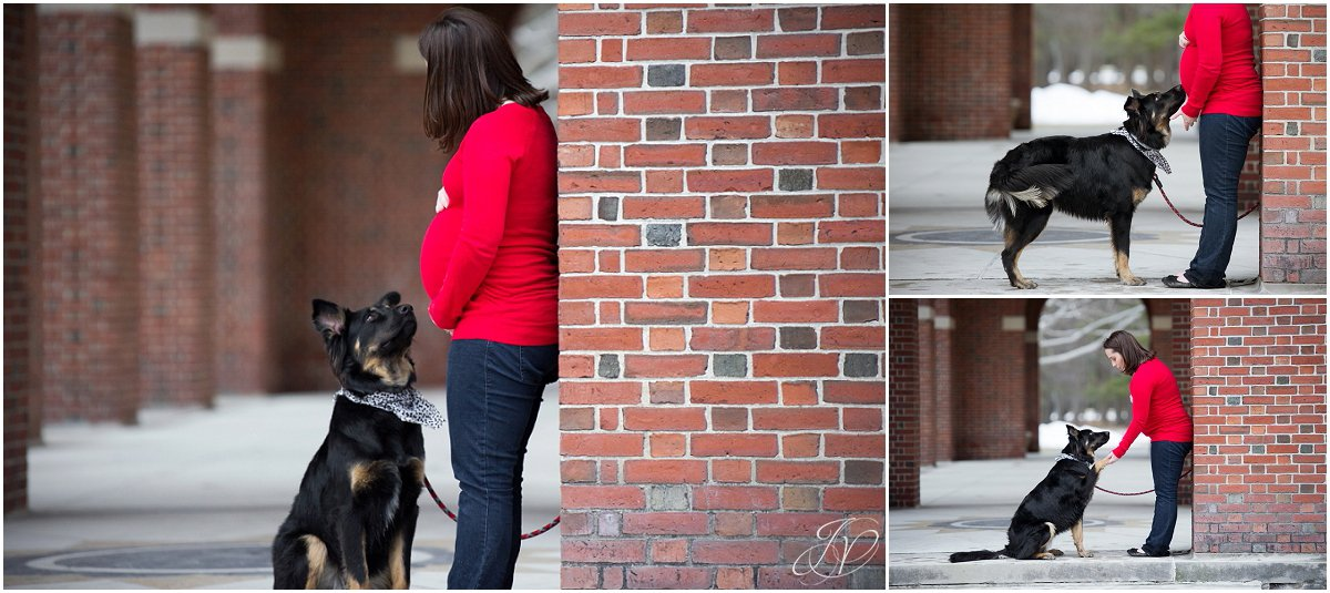 pregnancy photo outside with dog