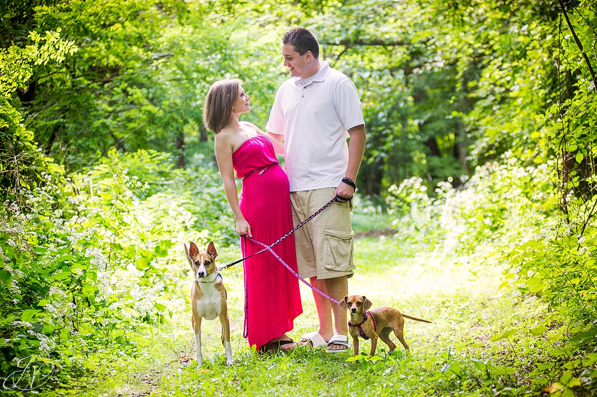 family with pets maternity photo, albany maternity photography, albany maternity photographer, john boyd thacher state park