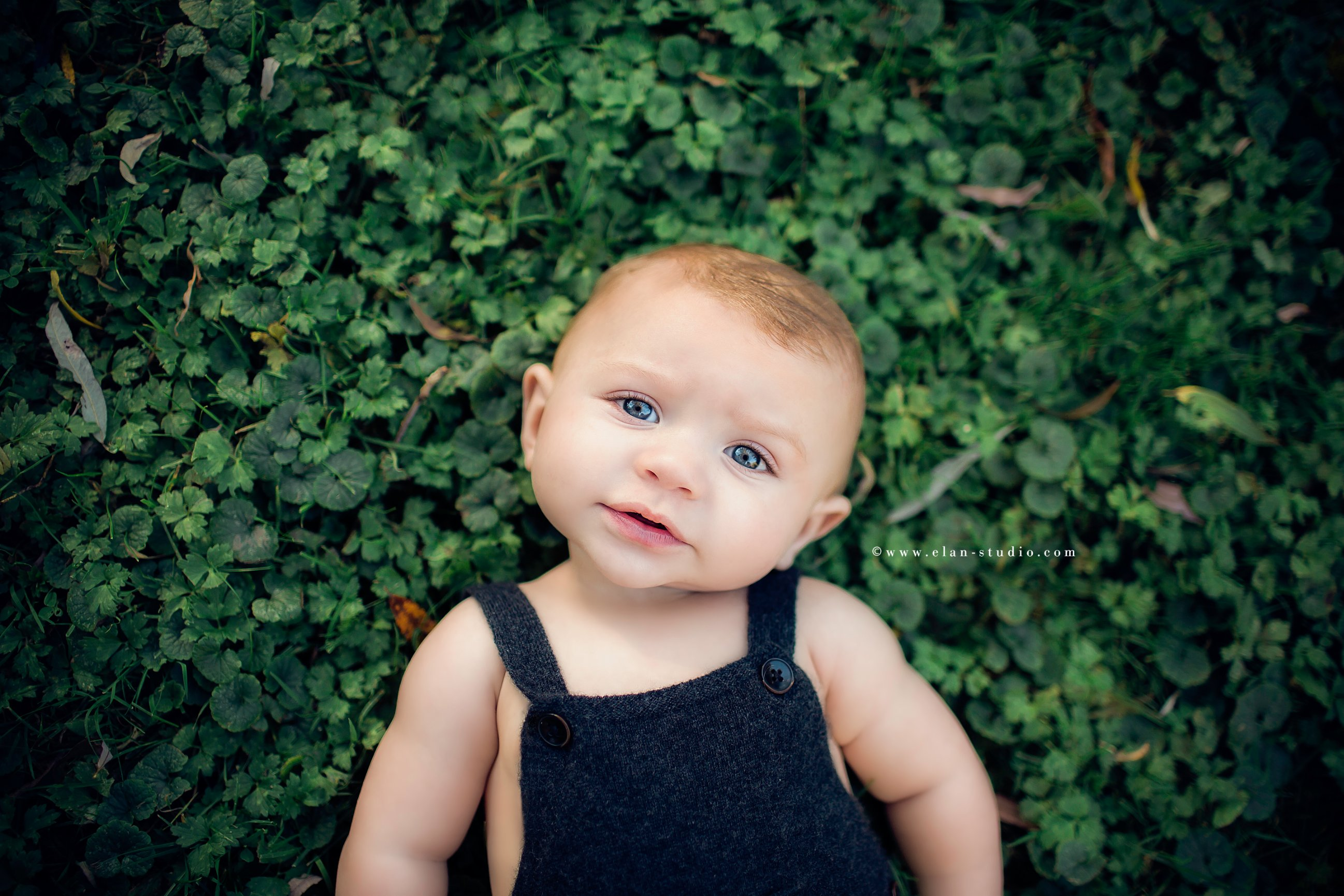 blue eyed baby boy in overalls, on clover bed