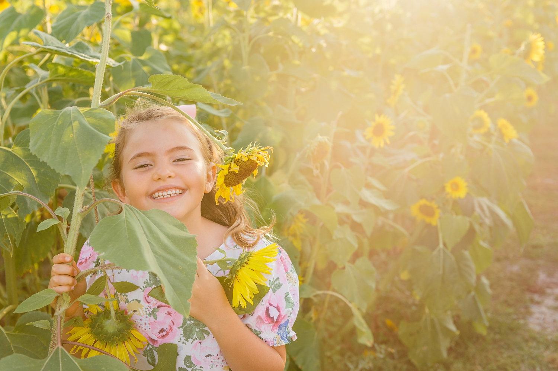 golden hour photography, golden hour sunflower photography, Rya Duncklee